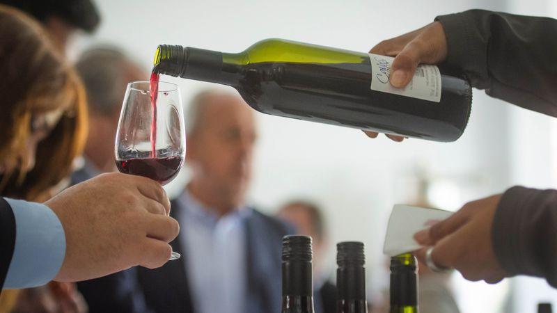Tres tips para lograr la temperatura ideal para servir el vino